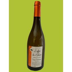 Chardonnay élevé en fut de chêne - l'Affut du Blanc