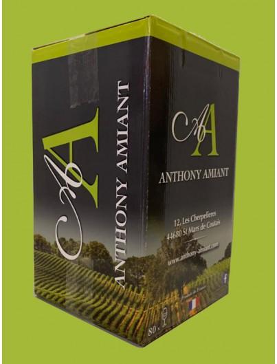 Sauvignon - vin blanc Anthony Amiant, Vin de France