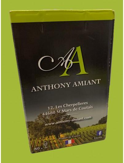Merlot rosé du domaine Anthony Amiant dans le 44