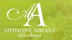 Domaine Anthony Amiant