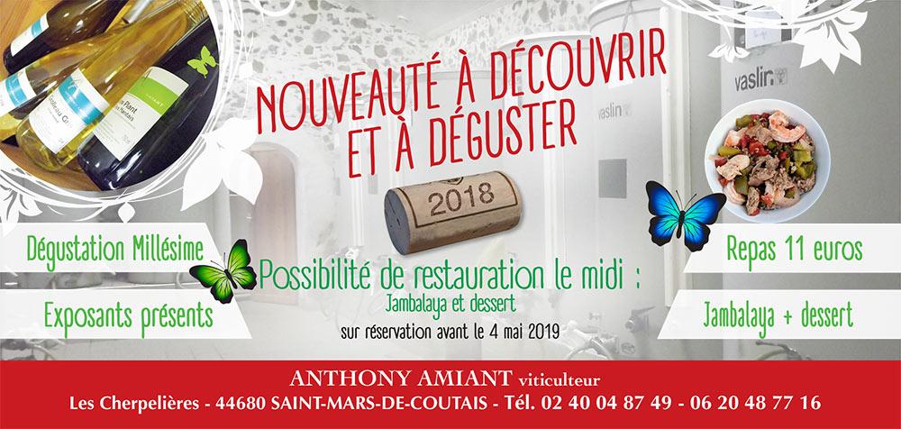 Dégustation vin Nantes mai 2019 - Anthony Amiant