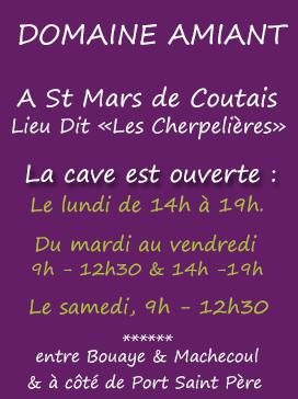 Domaine Anthony Amiant à St Mars de Coutais