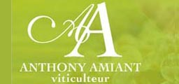 Viticulteur Pornic 44 Nantes Amiant Anthony
